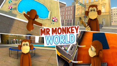 Mr Monkey World